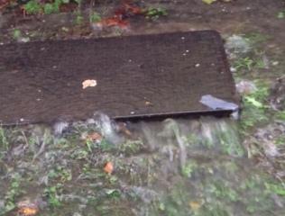 6 October 2019 War Memorial sewer